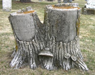 Памятник в виде двух пней