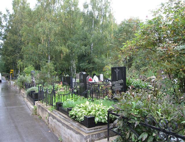 Хованское кладбище - пейзаж