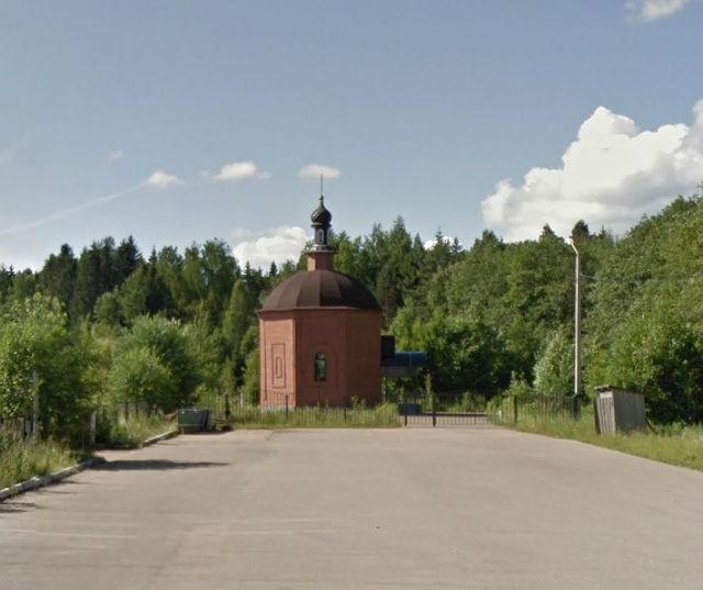 novoe-taraskovskoe-udomlya-2