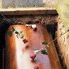 Похоронить человека