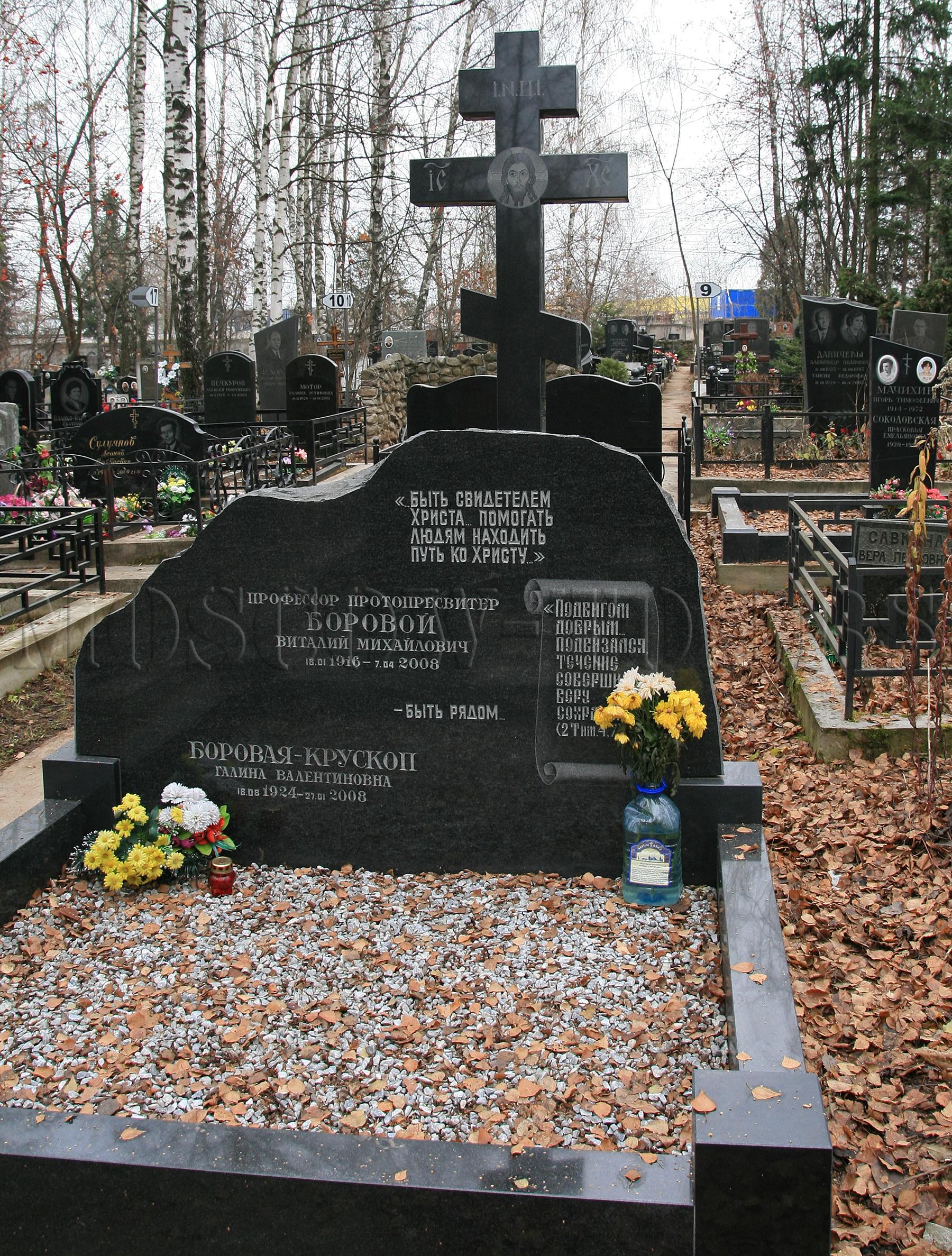 Памятник Виталию Боровому