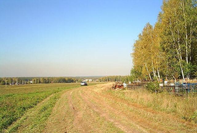Вид на кладбище Могильцы